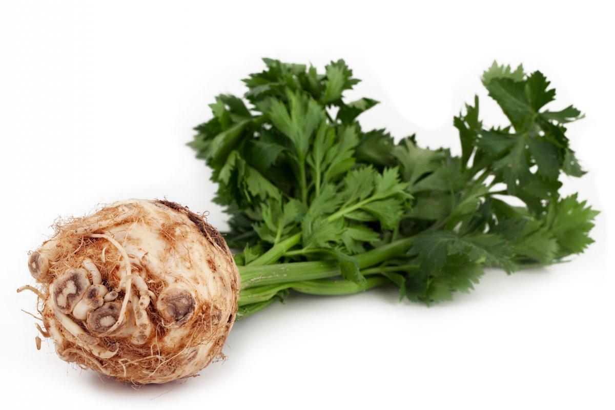 Energian Saasto—These Celery Allergy